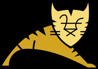 avsys-tomcat
